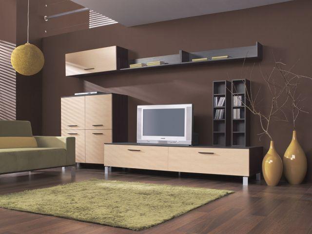 Несколько рекомендаций по выбору мебели в гостиную